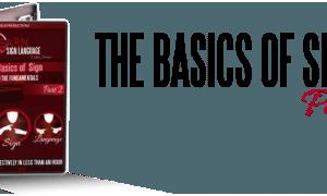 Basics 2